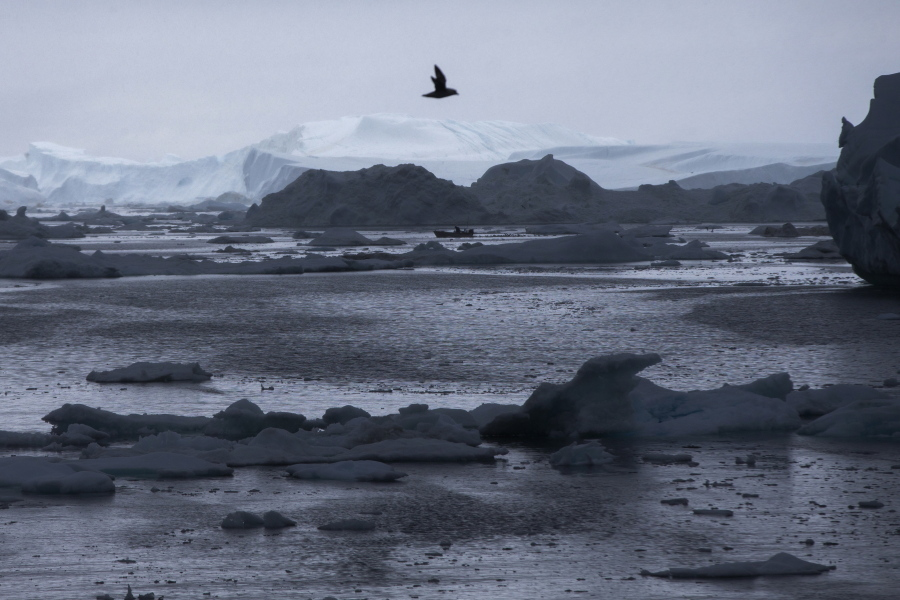 Arctic warming is happening twice as fast as in rest of the world