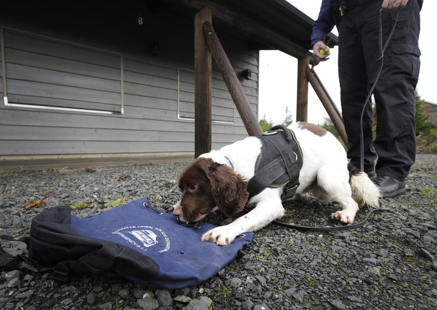 Coquille Tribal Police get new K-9 | The Columbian
