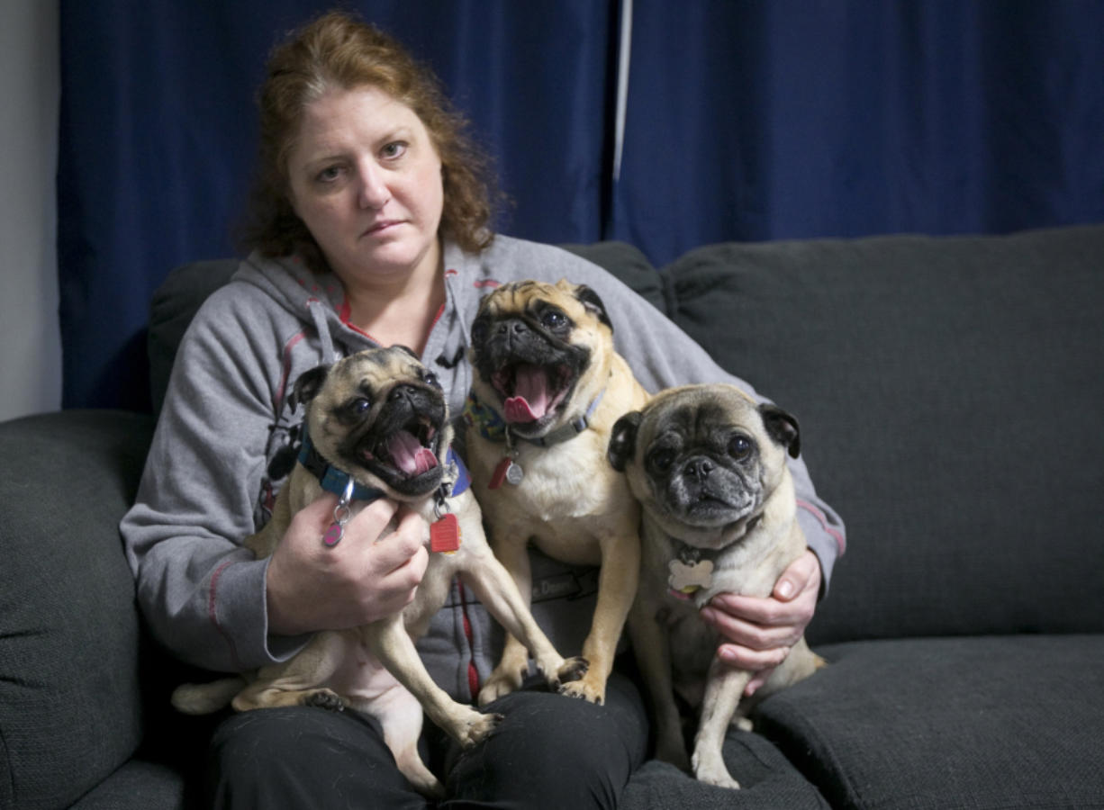 Nikki Mael and her three surviving pugs, from left, Tinkerbell, Tito and Tank, who all lived after eating Evanger's Hunk of Beef that tested positive for pentobarbital, a drug used in euthanasia, Mael said. Her other dog, Tulala, had to be put down after eating the food.