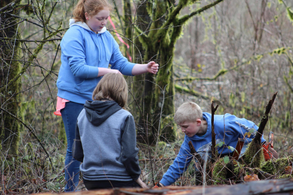 Woodland: Students from Green Mountain Middle School took a field trip to the Haapa Boat Launch on the Lewis River, where they planted trees and learned about restoration from Lower Columbia Fish Enhancement Group members.