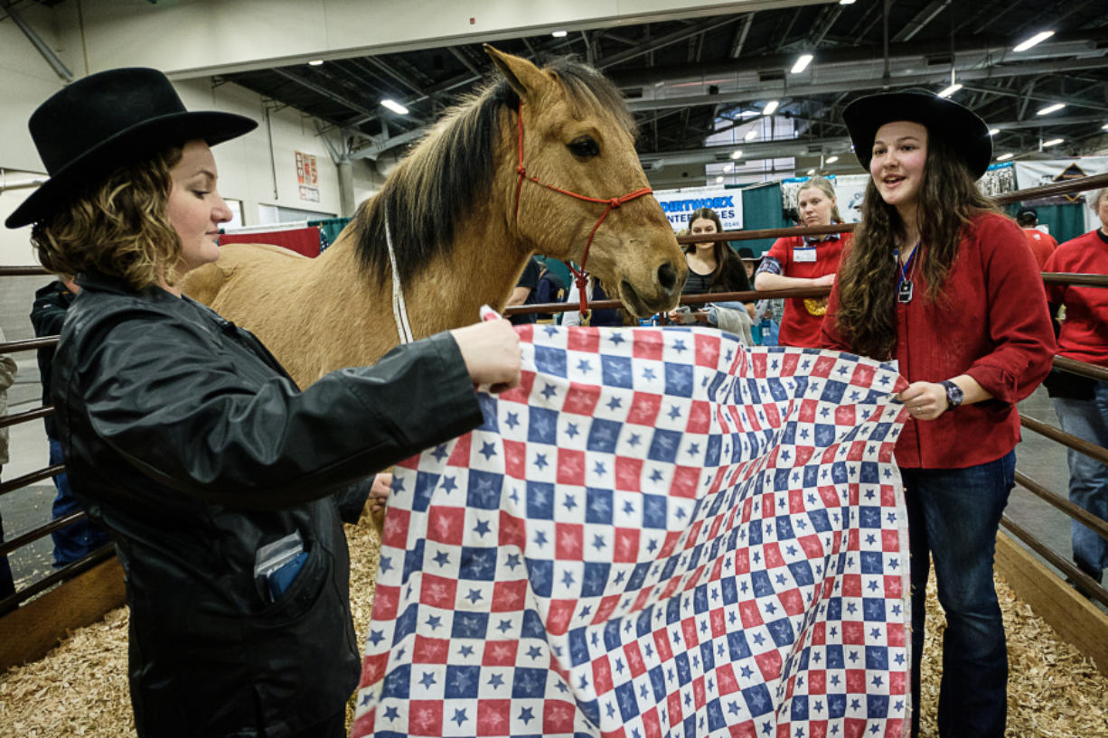 Kate Hudgin, left, and Graci Dissen speak Sunday about horse Diesel and the Windhaven Therapeutic Riding program for veterans.
