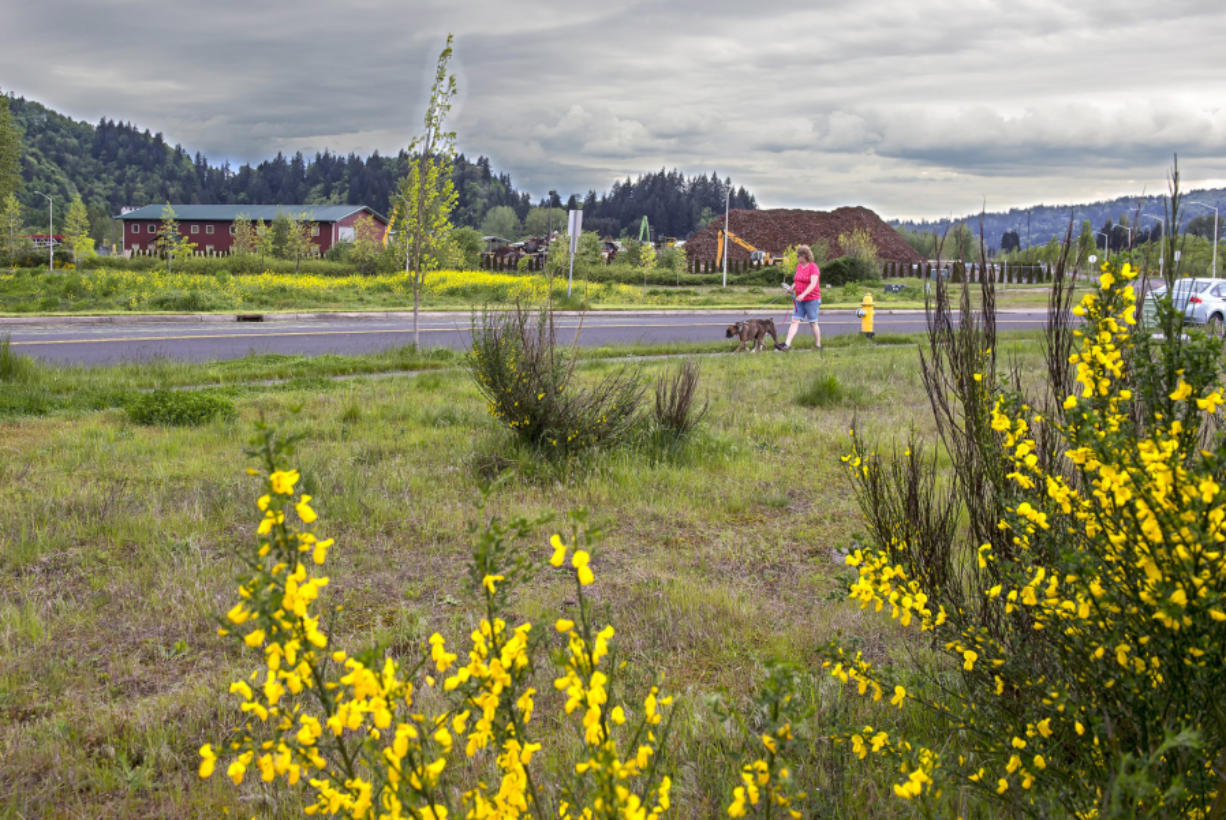 Much of the open, natural space at the Mint Farm could become a fertilizer plant with City Council approval. It will include using land now occupied by PNW Metals Recycling.