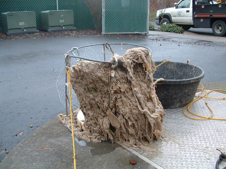 Wet Wipes Wipe Out Sewer Systems The Columbian