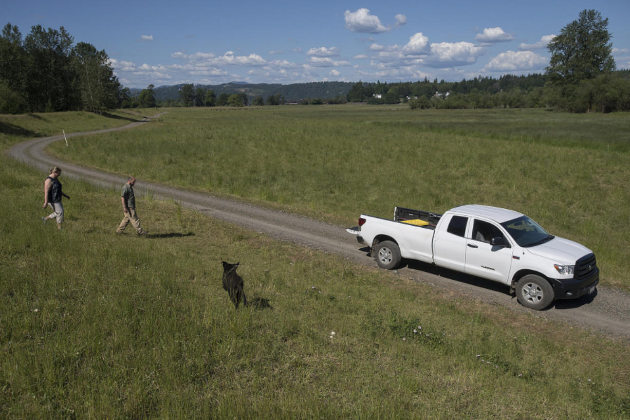 Plas Newydd Farm Conservation Manager Kelley Jorgensen, left, and David Morgan, the farm's managing partner, stroll the property with farm dog Kolo. The farm's staff is currently working to convert 876 acres of property into a wetlands and conservation bank.