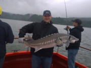 Anglers on the Columbia River had two days last weekend to catch sturgeon.