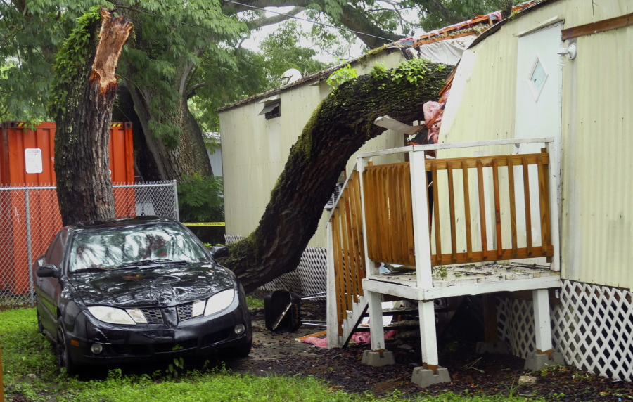 Part Of A Tree Rests On A Mobile Home In The Easy Living Mobile Home Park