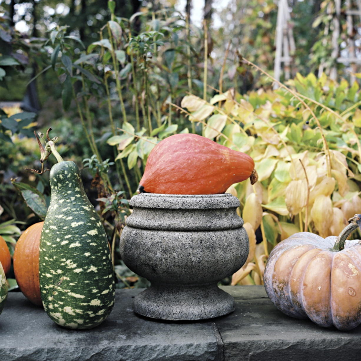 Halloween offers the first big chance of fall to decorate your home, and there are lots of ways — from spooky to sweet — to get into the spirit. John Dolan/ Martha Stewart Living
