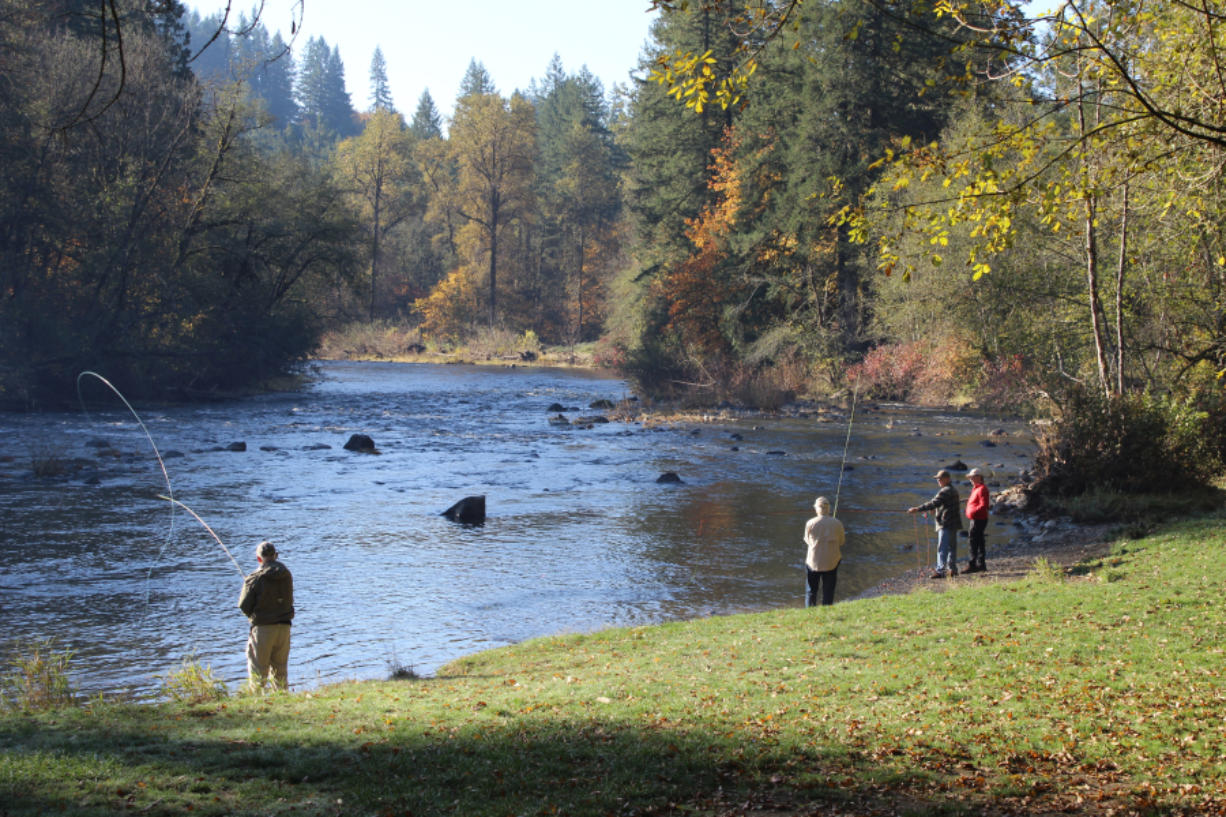 Attendees of the Clark-Skamania Flyfishers fall casting clinic try their hand at casting over the East Fork Lewis River at Lewisville Park near Battle Ground. The clinic featured tips on three different kinds of fly casting, including traditional, spey rod, and tenkara fly casting.