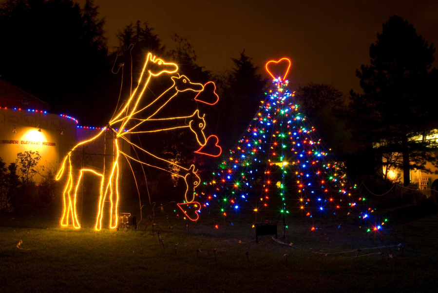 zoolights the oregon zoos traditional holiday light display runs through jan 7 at the