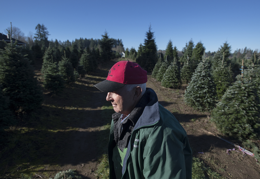 The Tree Wisemans in Ridgefield is a true family Christmas tree farm ...