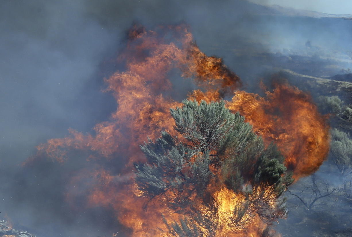 Fire engulfs sagebrush near Roosevelt in 2015. (AP Photo/Don Ryan, file)