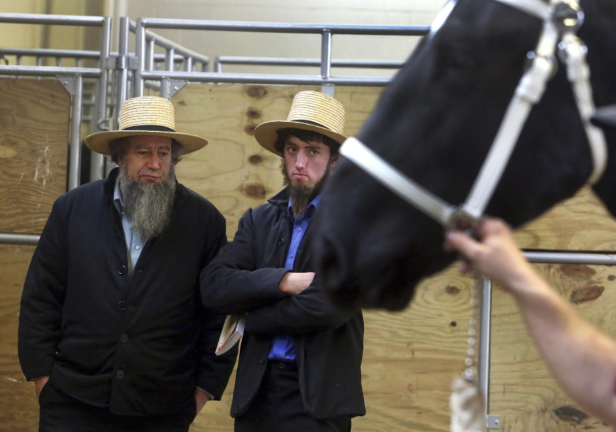 Amish or not, sellers and buyers at horse sale - Columbian com