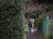 A pedestrian strolls through the rain along tree-lined streets in the Hough neighborhood March 13.