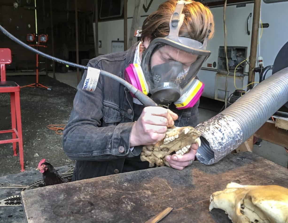 A Skill For Carving Skulls Columbian Com