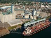 United Grain Corp. said it has already seen impacts in business after China suggested tariffs on soybeans and more than 100 other U.S. products. The company is the largest exporter at the Port of Vancouver.