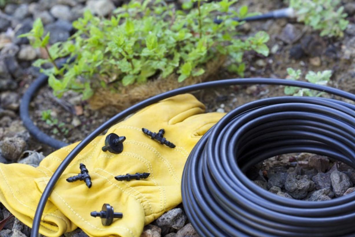Drip irrigation system has many benefits - Columbian com
