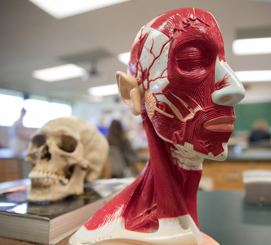 Cadavers share their silent lessons with Clark students | The Columbian