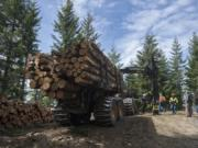 Members of Columbia Land Trust check out logging operations on forest land they own in late May. The land trust bought the land outright in 2013 from timber company Pope Resources as part of a larger agreement to keep housing out of most of the company's 24,000 acres.