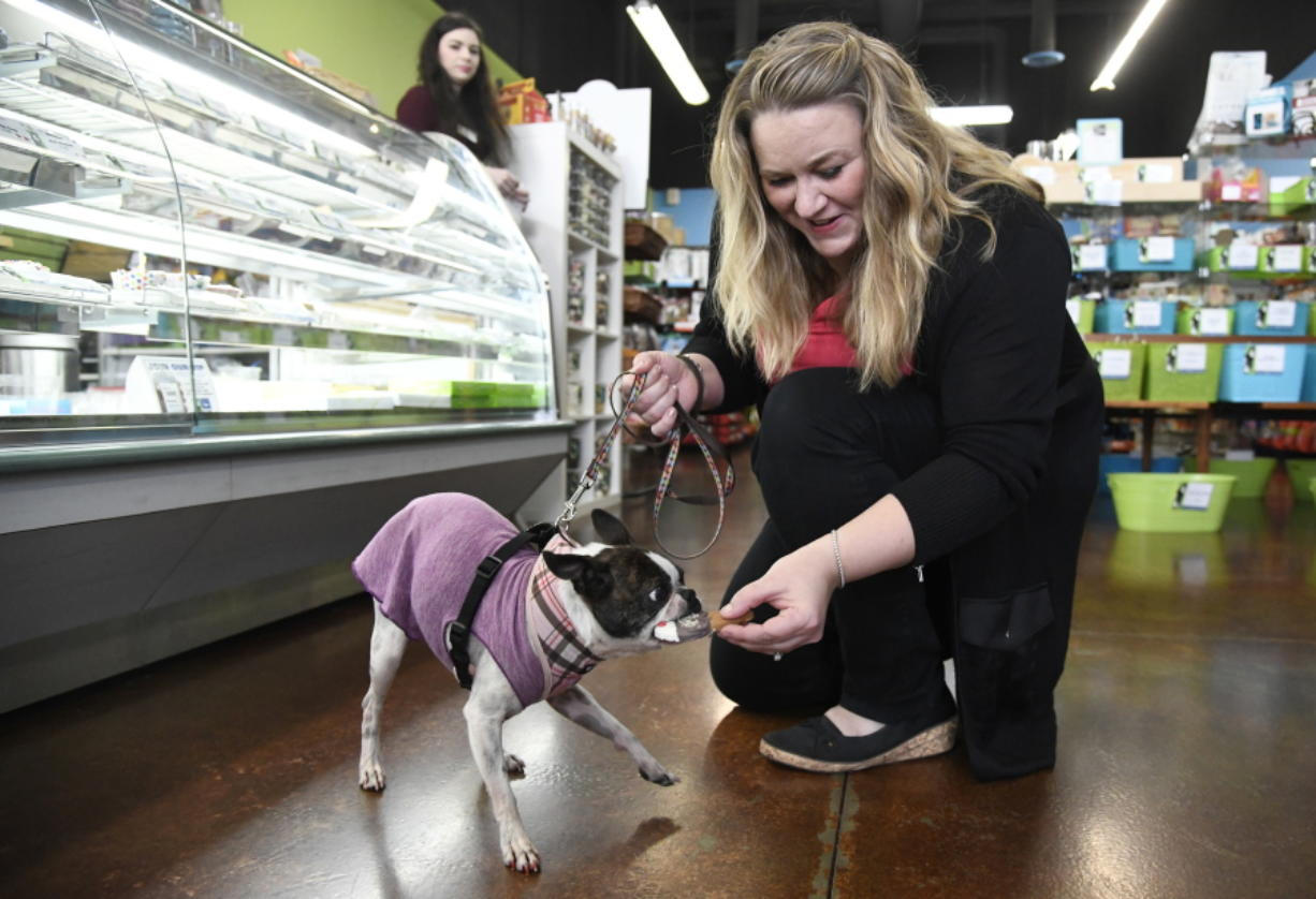 AdreAnne Tesene plays with her dog, Sassy, at her store, Two Bostons Pet Boutique, in Naperville, Ill.
