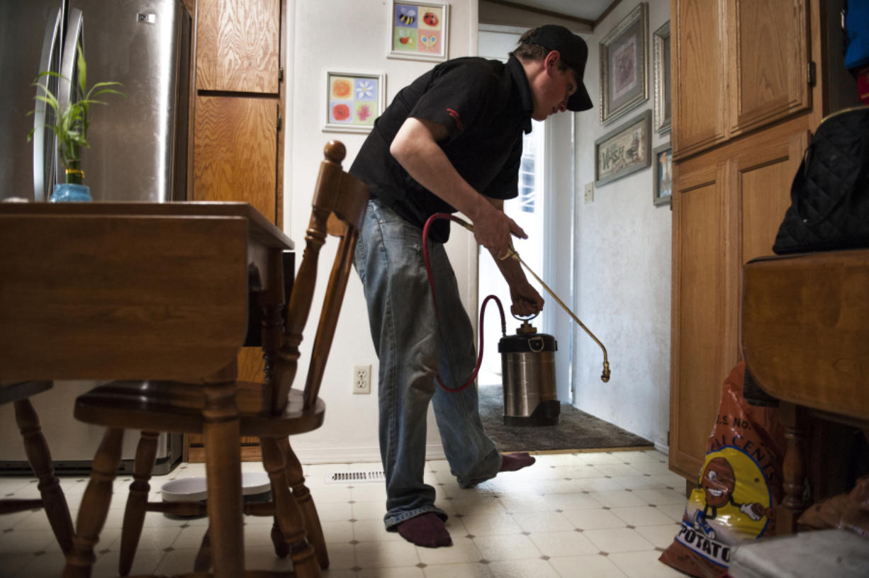 Gabriel Bunker, technician with Antworks Pest Control, sprays Transport Mikron around the floorboards of a home in north Vancouver on Friday while searching for sugar ants.