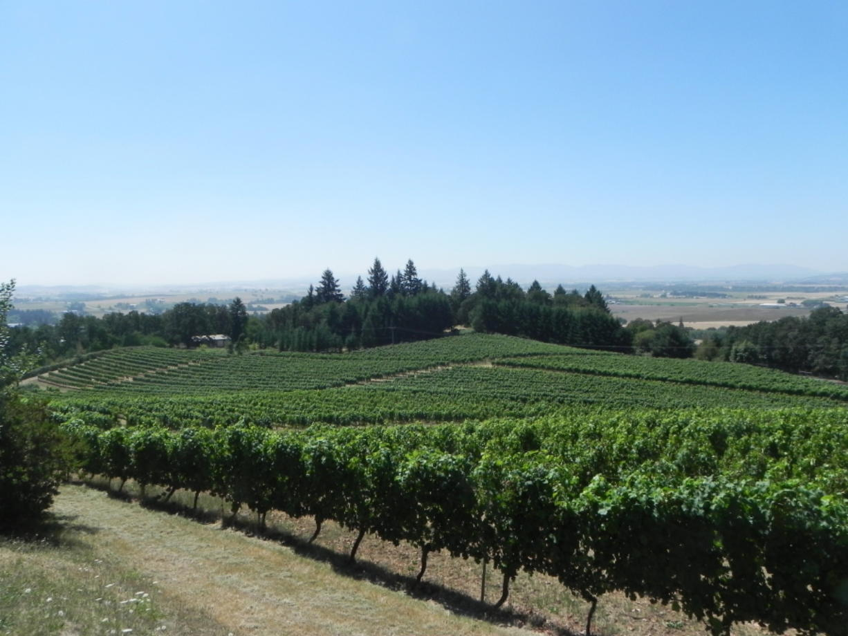 Winemakers try to stem crisis - Columbian com