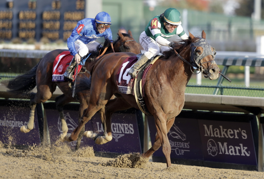 Accelerate Wins Breeders Cup Classic At Churchill Downs