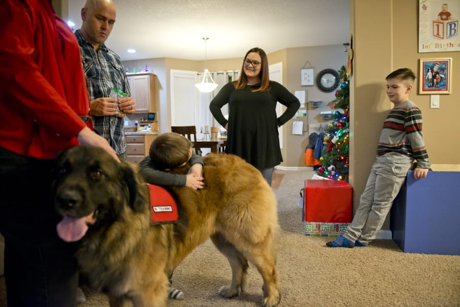 Vancouver Family Needs New Service Dog For Son With Autism The