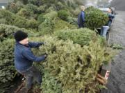 The Boy Scouts will hold their annual Christmas tree recycling event on Saturday.