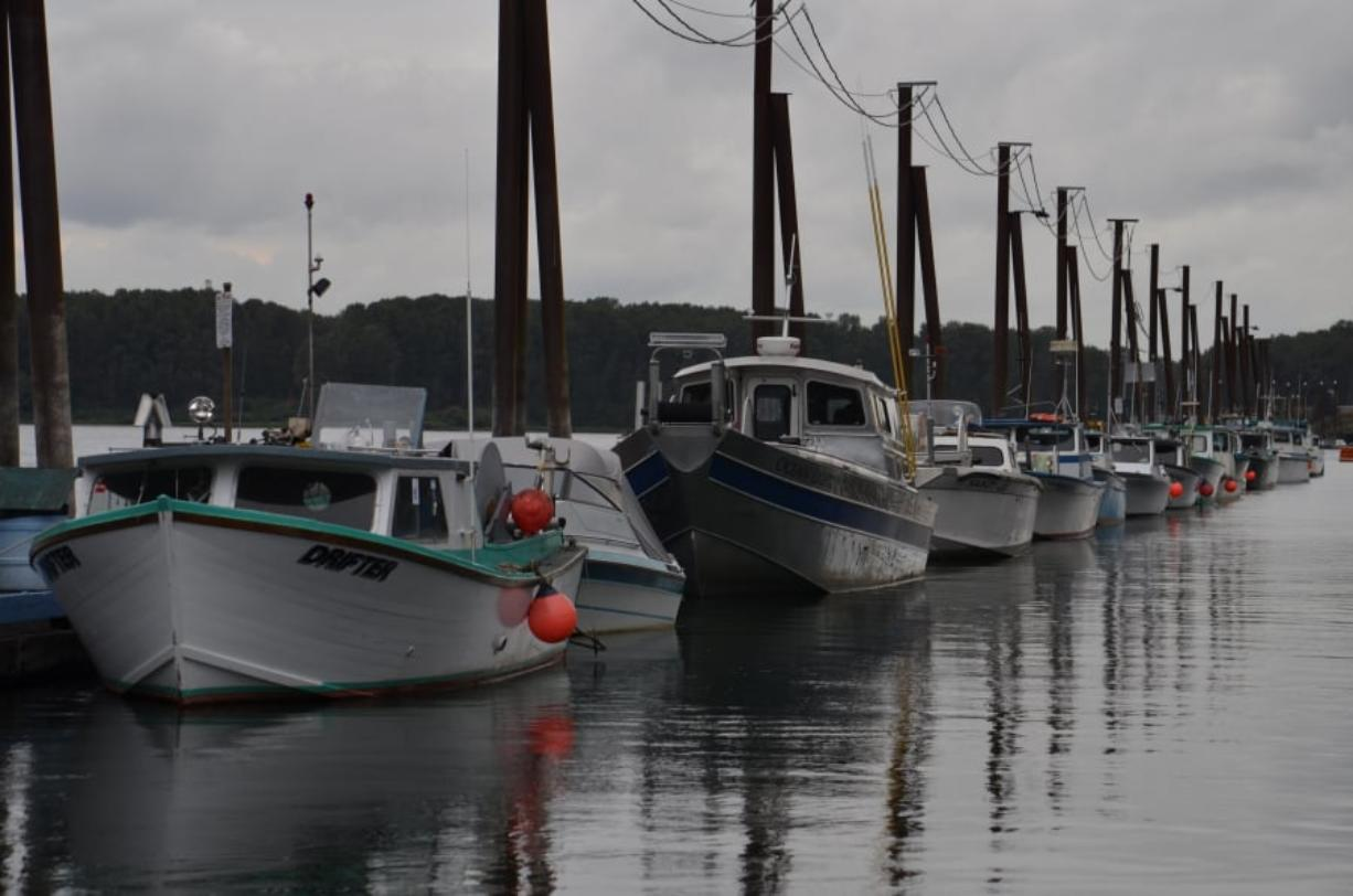 Gillnetting boats sit moored at the Port of Camas-Washougal during a previous season. As Oregon and Washington try to hammer out a policy regarding the nets on the Columbia River, both gillnetters and sports anglers remain at odds.