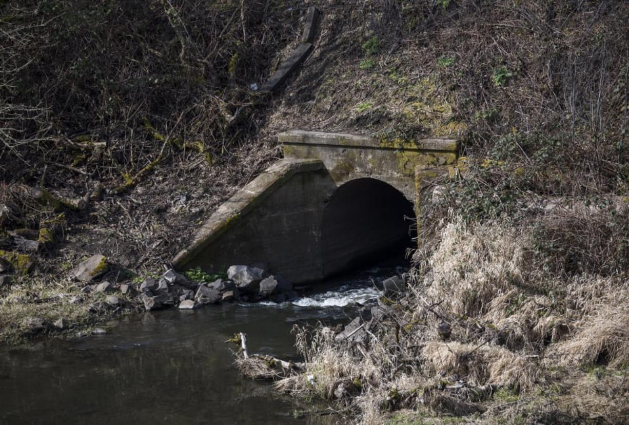 Two large culverts connect the mouth of Burnt Bridge Creek and Vancouver Lake under an isthmus constructed to carry the BNSF Railway's main line and a section of Lake Shore Avenue.