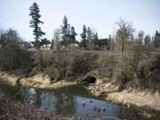 Burnt Bridge Creek forms a small estuary near where it flows through two culverts into Vancouver Lake.