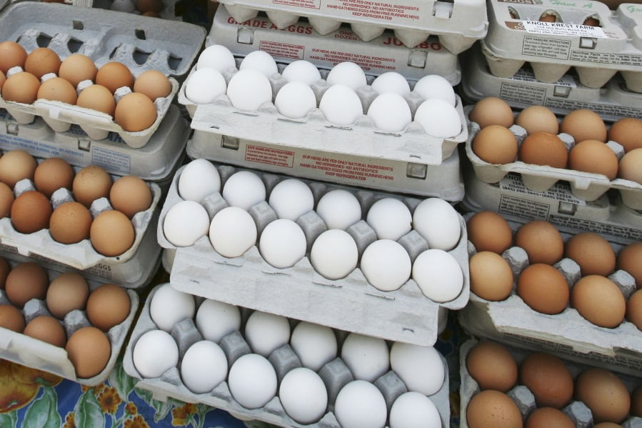 Are eggs healthy? New students warns against eating too many