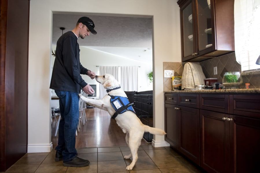 Former writing an essay officer and service dog forced to go away cafe