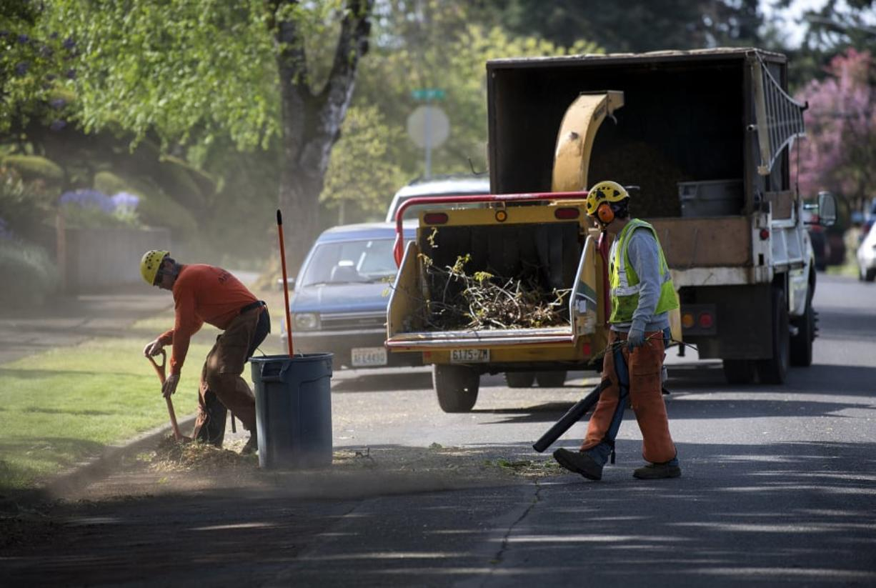 Matt Buttrell of Arborscape Tree Care, left, joins colleague Eulices Ibarra as they help prepare for future road preservation work on April 25 in Vancouver's Rose Village neighborhood.