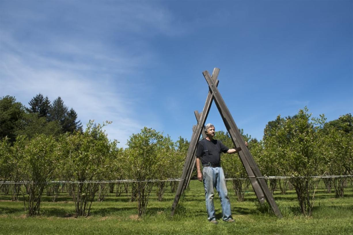 """George Brereton started Gifts of the Planet Farm in 2007 after retiring from a career as a ship captain in Alaska. At 2 acres, his farm is small but produces about 10,000 pounds of fruit a year, he said. However, he concedes he doesn't turn a profit. """"I've only made a profit one year and that's when I took a couple trees off the top of my hill up there and sold them,"""" he said."""