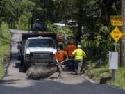 Darrell Young, a heavy-equipment operator for Clark County Public Works, center, helps spread sand over a newly paved section of Northeast Lakin Road to decrease the tackiness of the surface near Hockinson.