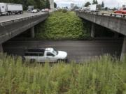 Traffic drives past the 179th Street and I-5 interchange.