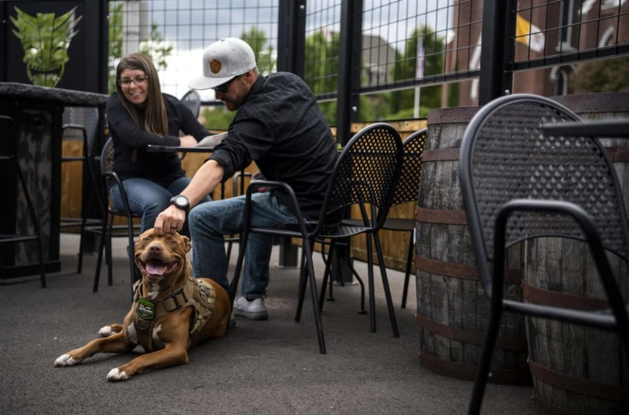 Bernadette Pye, her husband Andy and their red nose pitbull, Suntwo, enjoy an evening at Heathen Brewing Feral Public House in Vancouver. Clark County Public Health has created a variance to Washington's food code that allows dogs on outdoor spaces at restaurants. Heathen and Loowit Brewing are the only restaurants to receive variances so far.