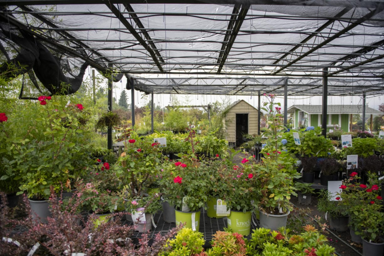 Hidden Gardens Nursery in Camas is preparing to close after nearly 30 years in business. The nursery covers 5 acres and sells plants, pottery, bark, rocks and soil.
