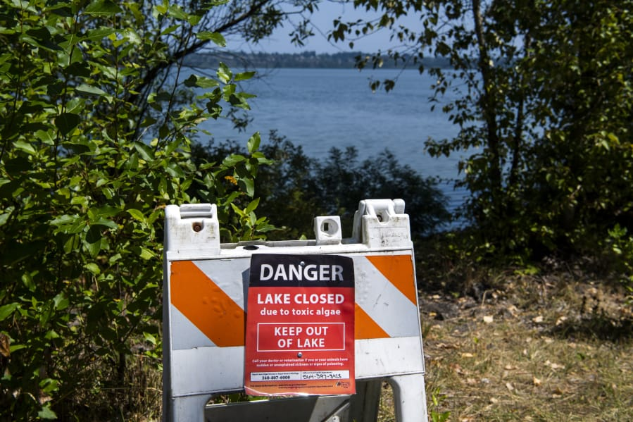 Signs are posted around Vancouver Lake to warn visitors that the lake is closed due to toxic algae in August 2019.