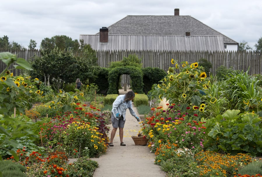 History still blooming in the Fort Vancouver garden