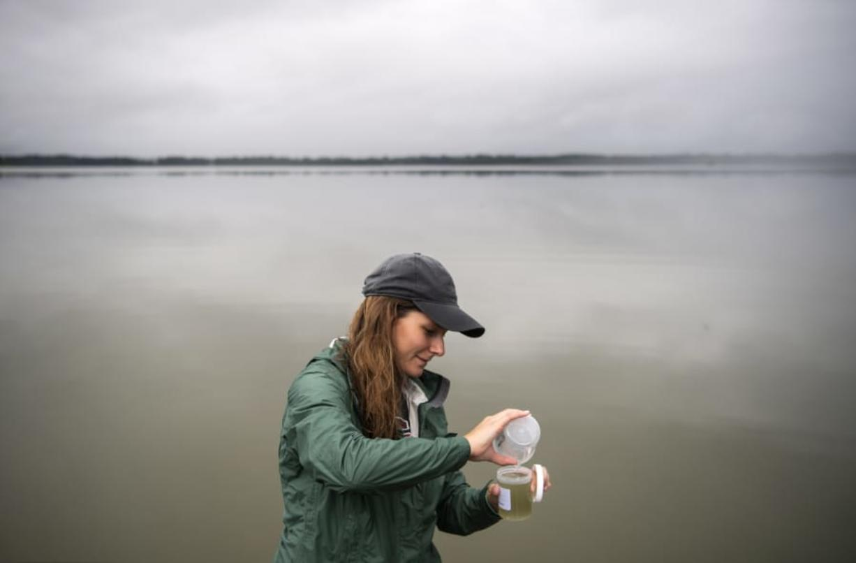 Washington State University Vancouver graduate student Katie Sweeney pours a water sample from Vancouver Lake into a collection container on the docks at the Vancouver Lake Sailing Club. Sweeney's work is noteworthy because Vancouver Lake can experience closures from toxic levels of cyanobacteria. (Alisha Jucevic/The Columbian)