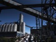 The United Grain storage silo was nearly empty as of Friday, according to a United Grain spokesman.