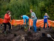 Volunteers plant trees with Vancouver Watersheds Alliance for Make a Difference Day in 2015.