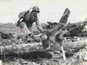 Marine Guy Wachtsletter and his dog, Tubby, participate in a training exercise. Tubby was shot and killed while serving in Guam during World War II. (U.S.