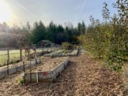 Judith Seifert and Paul Goodwin created a farm in Battle Ground.