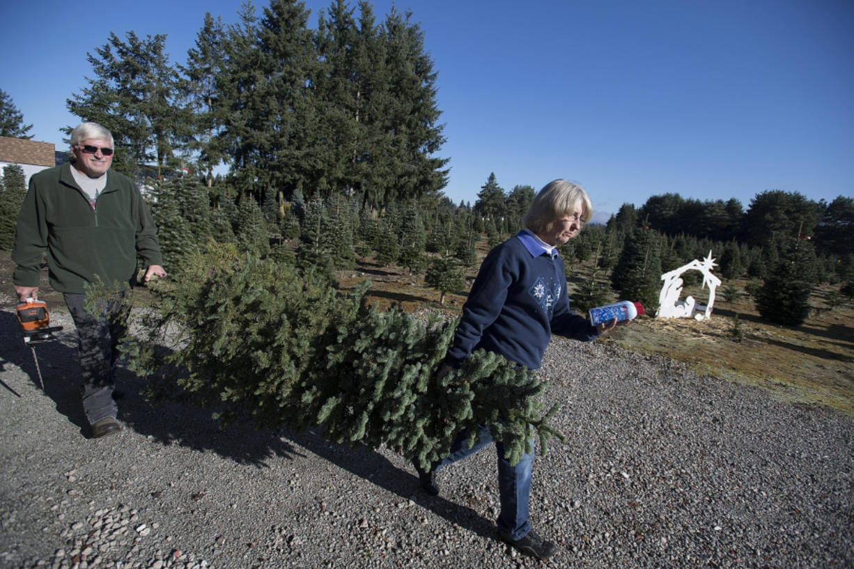 Loran, left, and Jane Larwick, both 65, haul what they say is an unsellable tree to be used instead for photo ops in Jane's shop. The two have run the 20-acre U-cut tree farm for 25 years, having lived at the property for just over 30 years.