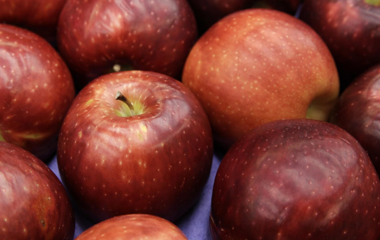 In this 2016 photo, a box of Cosmic Crisp apples is shown at Washington State University's Tree Fruit Research & Extension Center in Wenatchee. The apple is a brand new trademarked and focus group tested variety developed by the WSU lab over the last 20 years. The long awaited variety was released Dec. 1, and is available in some Clark County grocery stores. (Ted S. Warren/AP Photo)