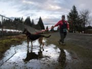 Volunteer Karen Hansen walks Harper, a German Shepherd mix, at the Humane Society for Southwest Washington on Wednesday morning. Volunteers turned out to nonprofits across Clark County on New Year's Day, ringing in the new year with a day of work instead of a day of rest.