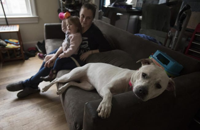 Pyperann Jones, 22 months, relaxes with her mother, Taylor Jones, and one of the family's dogs, Bonnie, 1, at their Vancouver home. (Amanda Cowan/The Columbian)